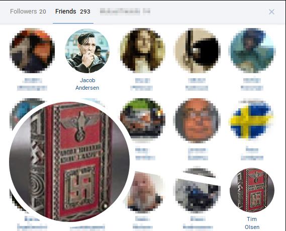 Blandt spidskandidatens venner er både det ledende medlem i Den Nordiske Modstandsbevægelse, Jacob Andersen og profilen Tim Olsen, hvis profilbillede er Mein Kampff med et forgyldt hagekors på forsiden. Screenshot.